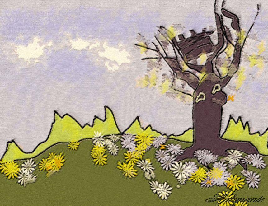 Album - dessins Illustrations