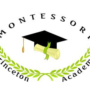 princetonmontessoriacademy.over-blog.com