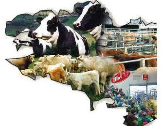 Une agriculture respectueuse de tout le vivant