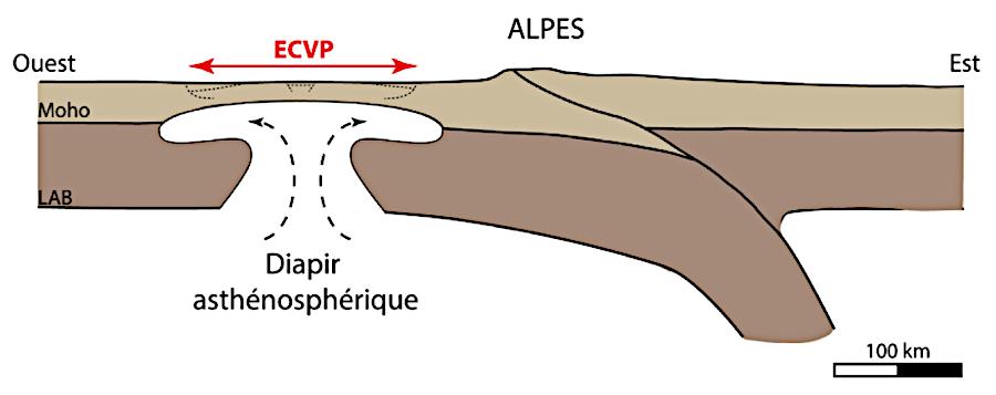 Figure 16. Modèle diapirique expliquant l'origine du volcanisme du Massif Central (illustration : A. Portal, d'après Brousse & Bellon, 1983). ECVP : European Cenozoic Volcanic Province.