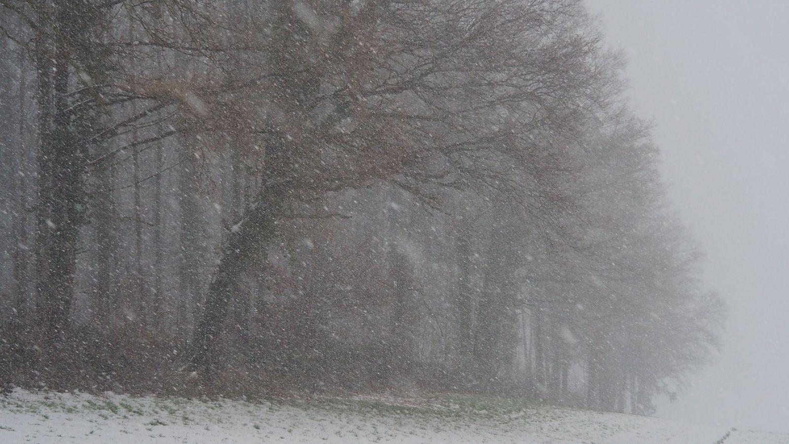 Romont sous la neige
