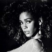 Whitney (documentaire) - artetcinemas.over-blog.com