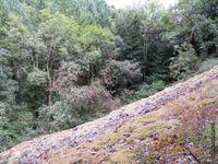 Le chemin entre éboulis et rochers