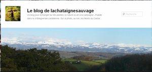 Ils parlent de l'Auvergne: La chataigne sauvage
