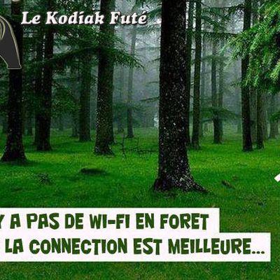Message de Dame Nature
