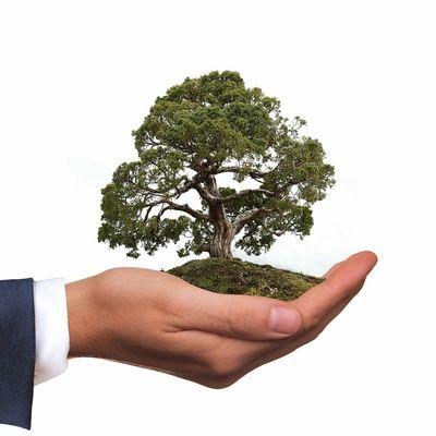 L'instant néerlandais du jour (2021_05_10): milieuvriendelijk
