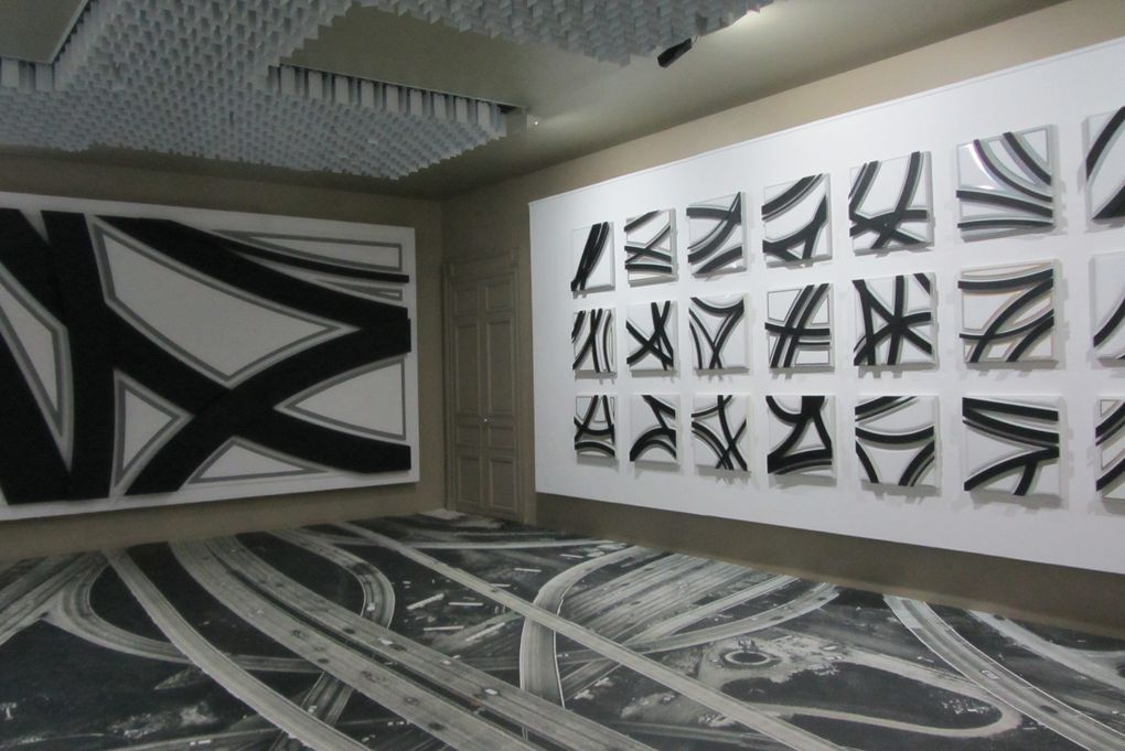 """Pavillon Carré de Baudoin Paris 20. Expo """" Lignées"""" de Romain Froquet."""