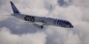 """Buzz : """"Star Wars"""" sur les flancs d'un avion"""