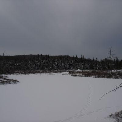 parc naturel du mont bélair (où l'article qui découvre de magnifique endroit dans sa ville)