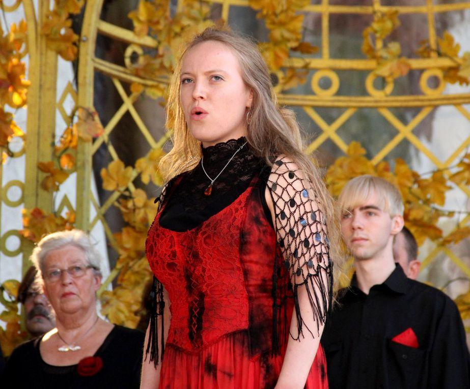 In Kooperation mit der Bayer. Kammeroper Veitshöchheim gestaltete die SMSV im Rahmen des Mozartsommers in der Würzburger Orangerie zwei Konzerte mit romantischen Chören, Lyrik und Liedern am 28. und 29.5.2011.