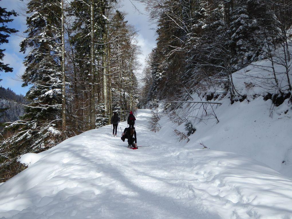 Randonnée raquettes - ski, La Bresse Hohneck.