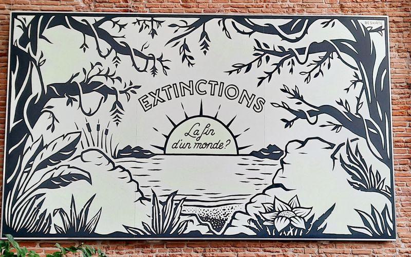 Muséum d'Histoire Naturelle - Toulouse