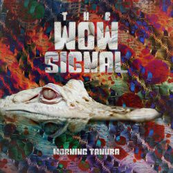 The Wow Signal - Morning Tanura