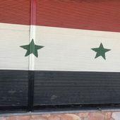Syrie: Les infâmes mensonges de Le Drian et des médias - A relayer partout (Elus, citoyens etc) - MOINS de BIENS PLUS de LIENS