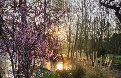 Arnières-sur-Iton : Le printemps chante au Moulin du Moussel