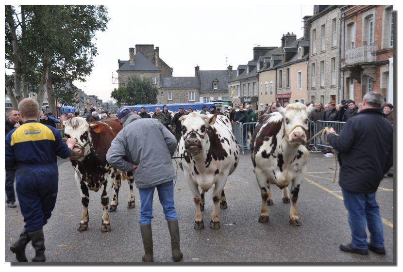 Le concours d'animaux, le concours gastronomique (tripes et pieds de cochon à la cassine) 2013 et 2014