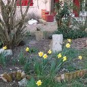 Le Lundi, mardi et mercredi au soleil dans le Jardin de Fille - Chez Mamigoz