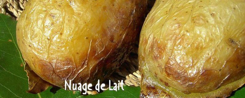 Pommes de Terre au Laurier pour un BBQ