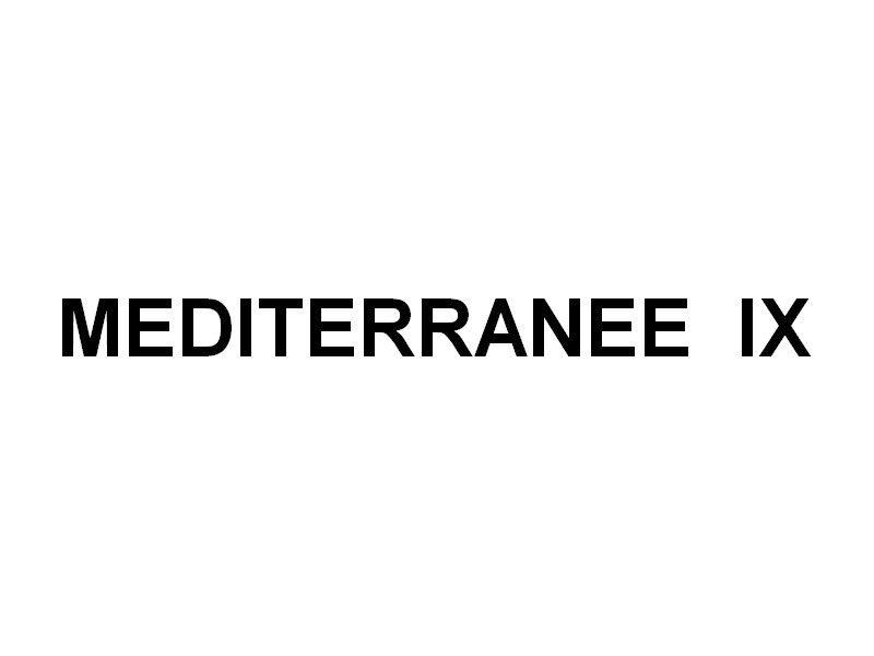 MEDITERRANEE  IX  , Vedette passagers entre le continent et les iles d'Hyères