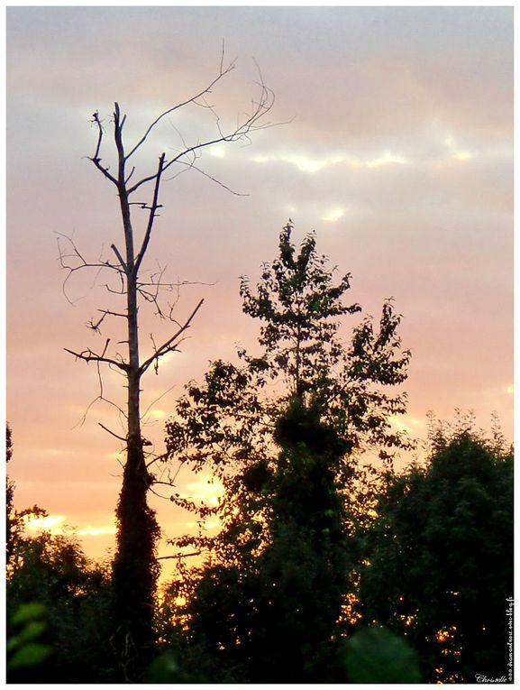Album - coucher-de-soleil
