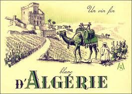 The Vineyard Algerian