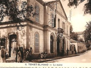 LES MAIRIES dans l'Algérie française (La Postale de Louise)