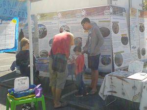 Jeux d'identification pour petits et grands et les panneaux sur la pêche à pied responsable.