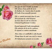 La rose  et la rosée du matin