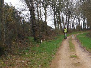 Du côté de Blanlin et à l'approche de  Loudéac.