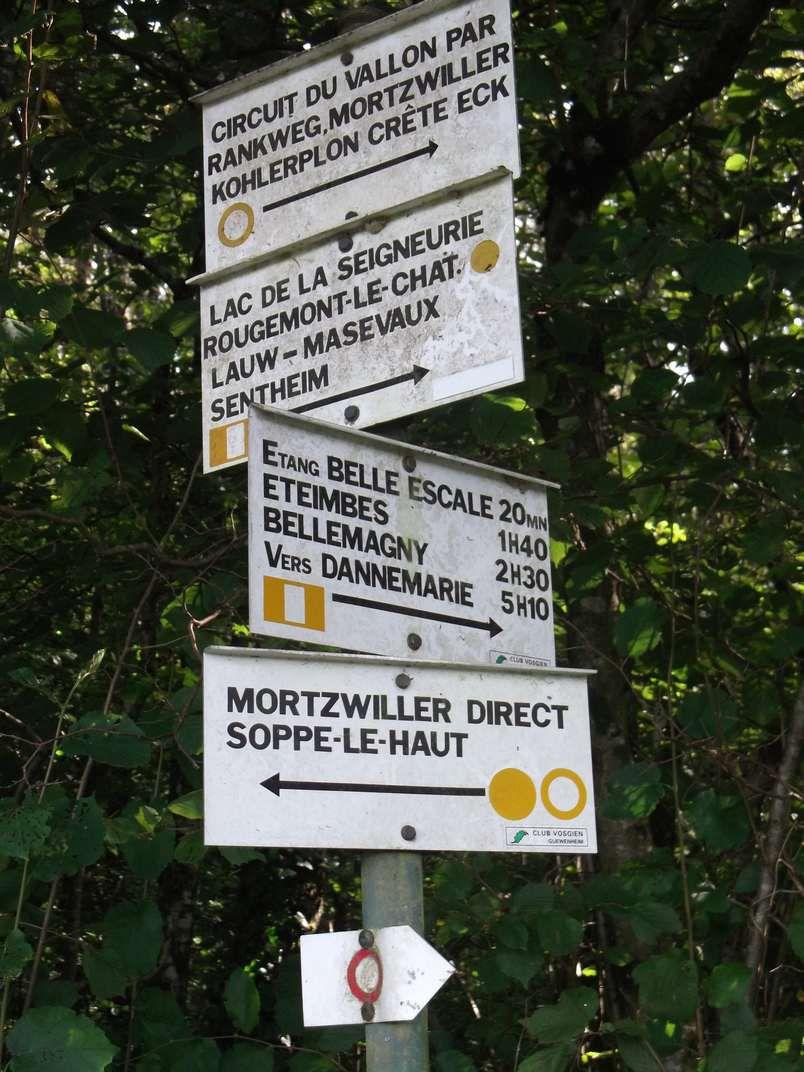 MORTZWILLER : CIRCUIT DU HAUT-SOULTZBACH (R 455) - 7,3 km - D+ 78 m - 2 h - 2/6