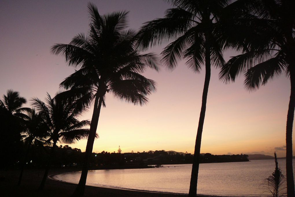 Airlie beach with Marion and Thibaud.
