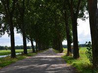 Alblasserdam Moulins de Kinderdijk (Pays-bas en camping-car)