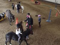 Stage Initiation à l'Equitation (01-05 Août)