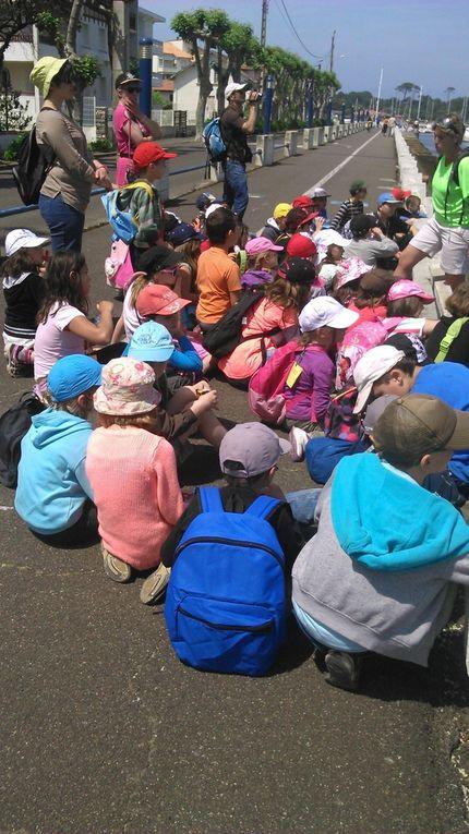 Lundi 11 mai 2015 : premier jour à Capbreton