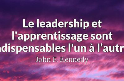 Le leadership en MLM... Comment le développer?