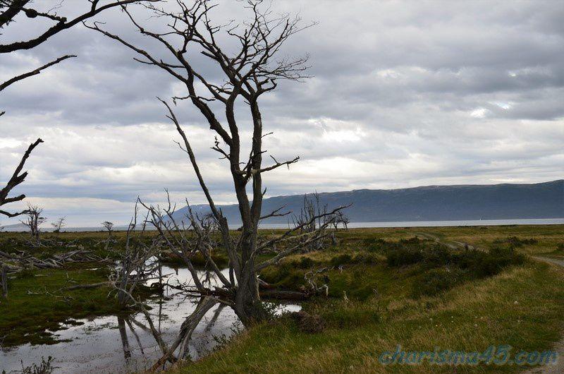 Estancia Haberton (Argentine en camping-car)