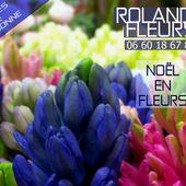 rolande fleurs (@rolandefleurs)   Twitter