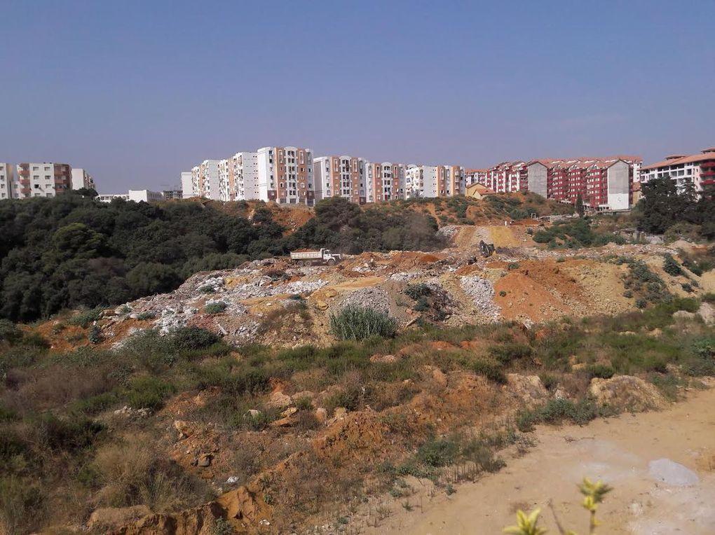 Draria, Seballa: Une décharge sauvage sous la coupe de délinquants organisés...