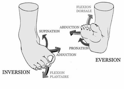 Quels sont les mouvements du pied qui sont améliorés par la semelle orthopédique Kinépod ?