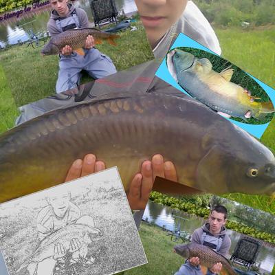 Merci à Corentin de nous faire profiter de sa pêche !