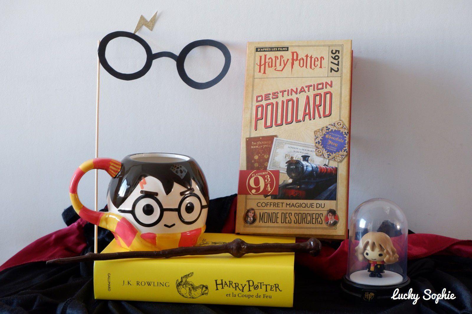 La nuit des livres Harry Potter