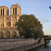 Cathédrale Notre-Dame de Paris - Wikipédia