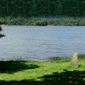 Brocéliande, forêt enchantée