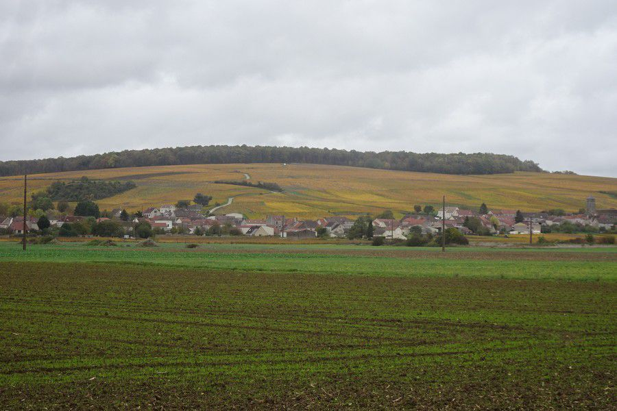 Le 29-10-20-Charly-sur-Marne