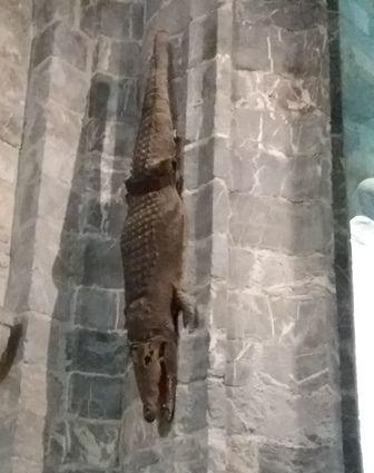 L'intérieur de la cathédrale de Saint-Bertrand-de-Comminges.