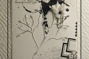 Cartes noir et blanc