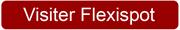 voir-chez-flexispot