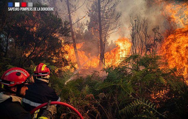 Issac (24) - Plusieurs pompiers engagés pour un violent feu de forêt