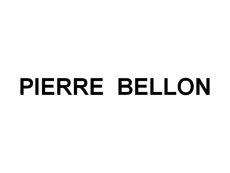 PIERRE BELLON , sur la Seine à Paris