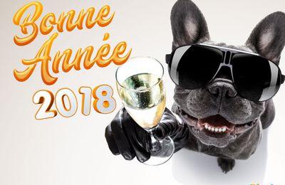 Bonne et heureuse année 2018....